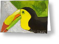 Toucan Greeting Card by Katie OBrien - Printscapes