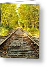Track To Nowhere Greeting Card by Greg Fortier