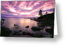 Tranquility  Greeting Card by Vance Fox