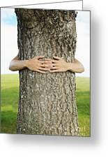 Tree Hugger 1 Greeting Card by Brandon Tabiolo - Printscapes