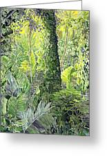 Tree In Garden Greeting Card by Fay Biegun - Printscapes