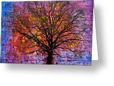 Tree of Life Greeting Card by David Clanton