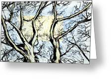 Tree With Rectangle Sun Greeting Card by John Terwilliger