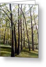 Trees Greeting Card by Lorna Skeie