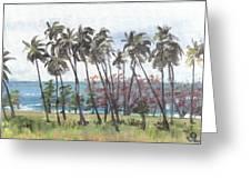 Tres Palmas Greeting Card by Sarah Lynch