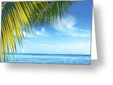 Tropical Beach Greeting Card by Carlos Caetano