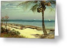 Tropical Coast Greeting Card by Albert Bierstadt