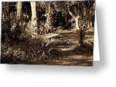 Tropical Hammock Greeting Card by Susanne Van Hulst