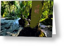 Tropical Spring Greeting Card by David Lee Thompson