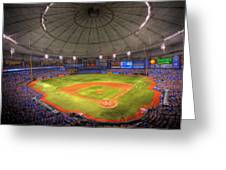 Tropicana Field Greeting Card by Shawn Everhart