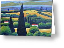 Tuscan Pines And South Bay Greeting Card by Gary Coleman