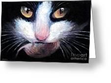 Tuxedo Cat With Mouse Greeting Card by Svetlana Novikova
