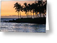 Twilight At Waikoloa Greeting Card by Al Andersen