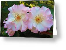 Twins Greeting Card by Jeanette Oberholtzer