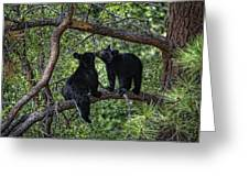 Two Bear Cubs Kissing Up A Tree Greeting Card by Paul W Sharpe Aka Wizard of Wonders