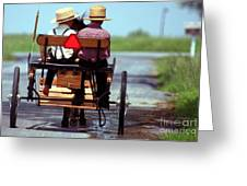 Two Little Amish Boys in a Buggy Greeting Card by Randy Matthews