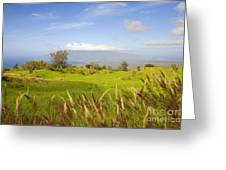 Ulupalakua Landscape Greeting Card by Ron Dahlquist - Printscapes