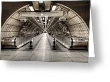 Underground Life 02 Greeting Card by Svetlana Sewell