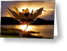 Uplifting Greeting Card by Karen M Scovill