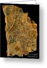 Uranium Ore Conglomerate Greeting Card by Ted Kinsman