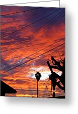 Urban Sunrise Greeting Card by Shannon McMannus