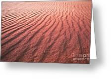 Utah Coral Pink Sand Dunes Greeting Card by Ryan Kelly