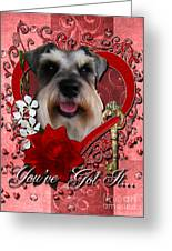 Valentines - Key To My Heart Schnauzer Greeting Card by Renae Laughner
