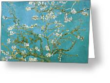 Van Gogh Blossoming Almond Tree Greeting Card by Vincent Van Gogh
