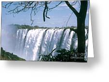 Victoria Falls Greeting Card by Photo Researchers, Inc.