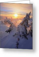 View Of Snow-covered Trees At Mont Greeting Card by Yves Marcoux
