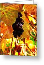 Vineyard 20 Greeting Card by Xueling Zou