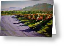 Vineyard Shadows Greeting Card by Becky Chappell