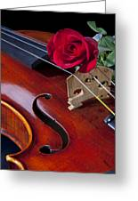 Violin And Red Rose Greeting Card by M K  Miller