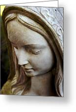 Virgin Mary Greeting Card by Off The Beaten Path Photography - Andrew Alexander