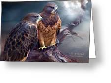 Vision Of The Hawk Greeting Card by Carol Cavalaris