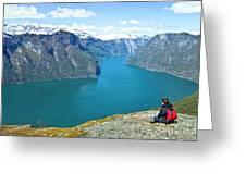 Visitor At Aurlandsfjord Greeting Card by Heiko Koehrer-Wagner