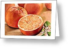 Vitamin C Greeting Card by Irina Sztukowski