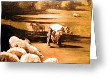 Wade With Sheep Greeting Card by Helen Hickey