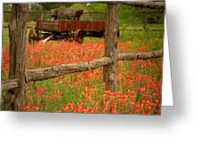 Wagon In Paintbrush - Texas Wildflowers Wagon Fence Landscape Flowers Greeting Card by Jon Holiday