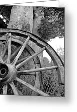 Wagon Wheels Greeting Card by Robert Lacy
