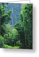 Waimoku Falls Greeting Card by Dave Fleetham - Printscapes