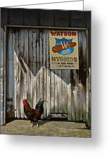 Waiting For Watson Greeting Card by Doug Strickland