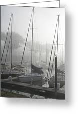 Waiting On The Fog Greeting Card by Laurie With