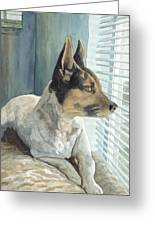 Watchdog Greeting Card by Don Bosley
