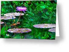 Water Lilly Greeting Card by William Wetmore