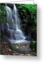 Waterfall Greeting Card by Carlos Caetano