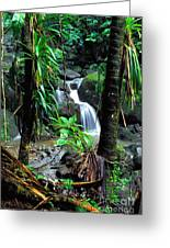 Waterfall El Yunque National Forest Mirror Image Greeting Card by Thomas R Fletcher