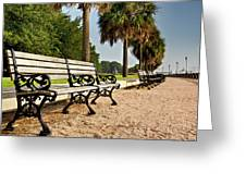 Waterfront Park Bench Greeting Card by Drew Castelhano