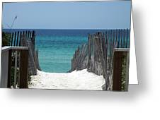 Way To The Beach Greeting Card by Susanne Van Hulst