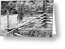 Weathered Fence Greeting Card by Larry Ricker